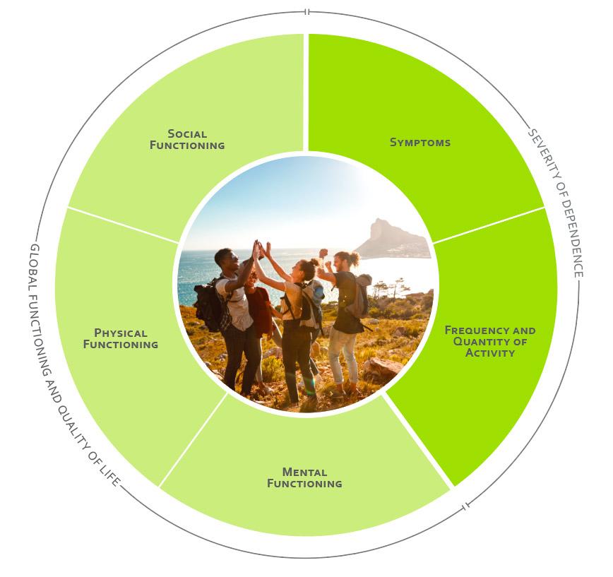 ICHOM Standard Sets Addiction Outcomes Wheel