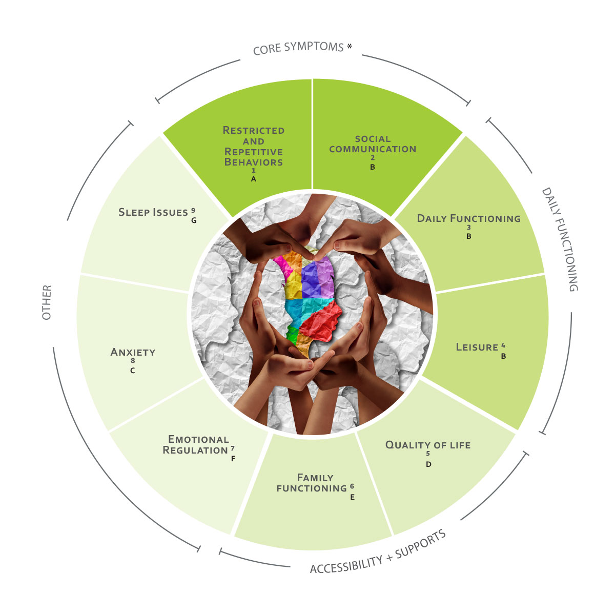 ICHOM Standard Sets Autism Spectrum Disorder ASD Outcomes Wheel