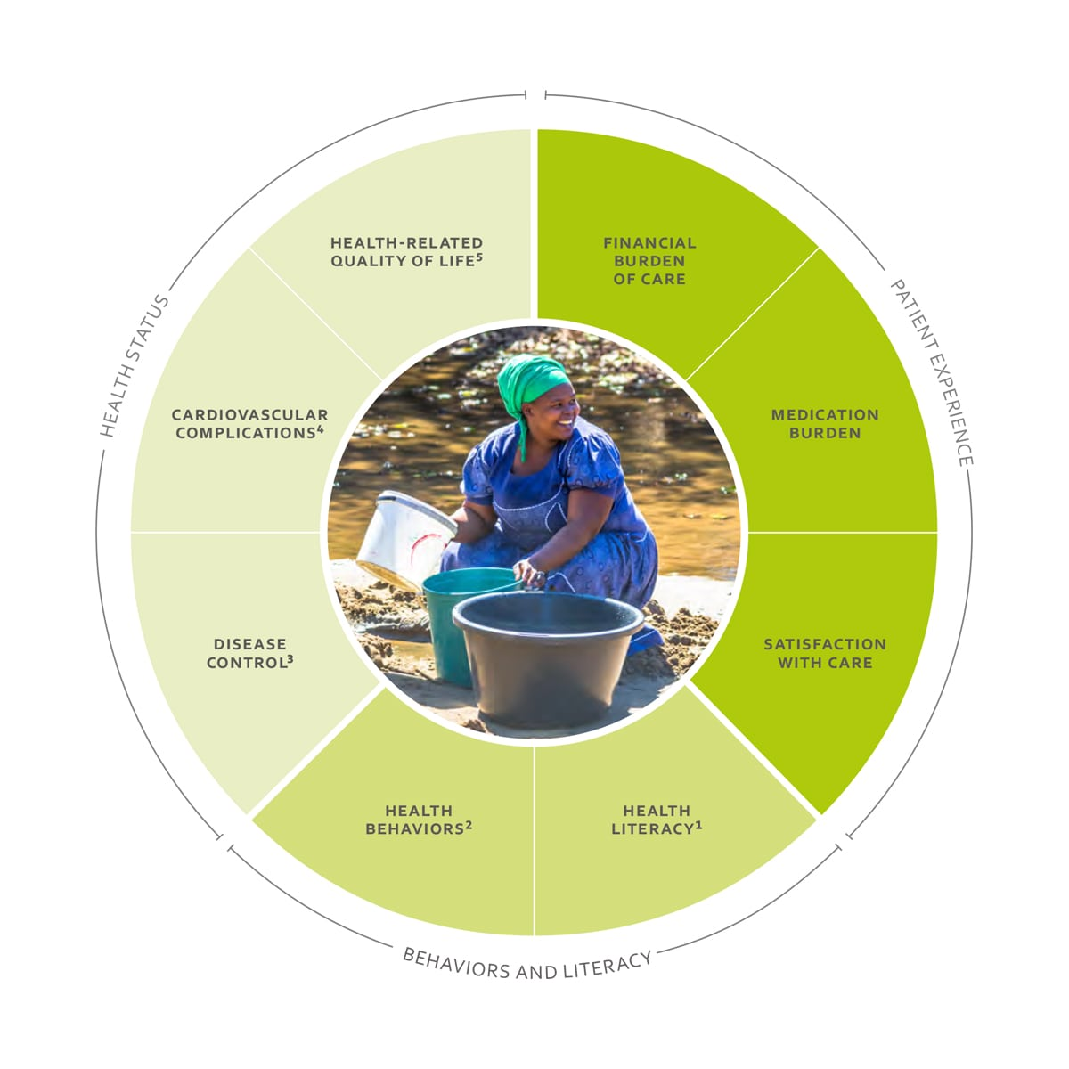 ICHOM Standard Sets Hypertension in Low- and Middle - Income Countries Outcomes Wheel