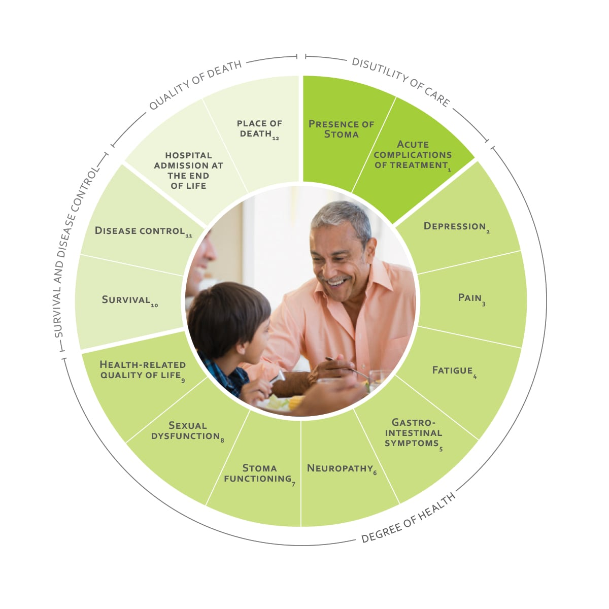 ICHOM Standard Sets Colorectal Cancer Outcomes Wheel