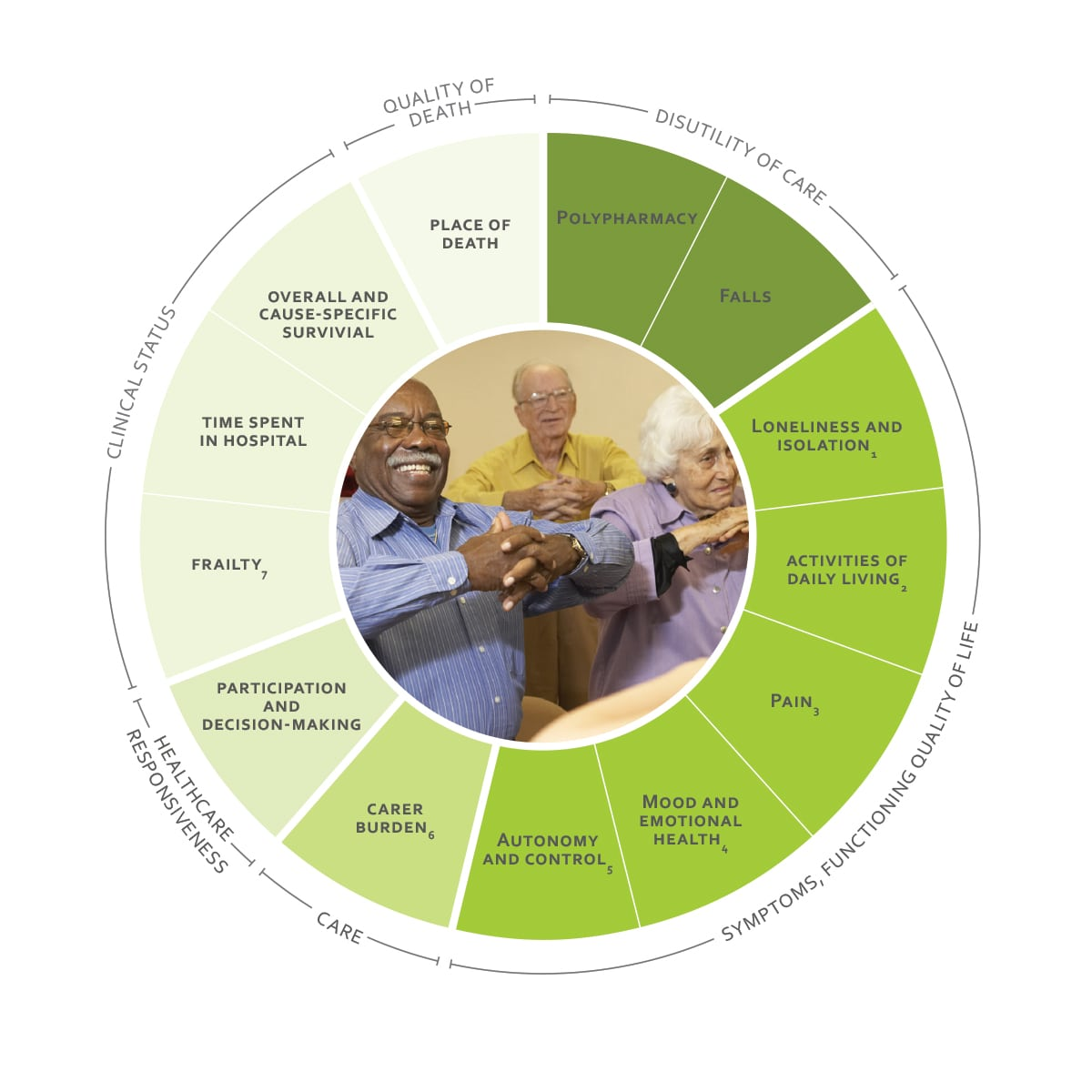 ICHOM Standard Sets Older Person Outcomes Wheel