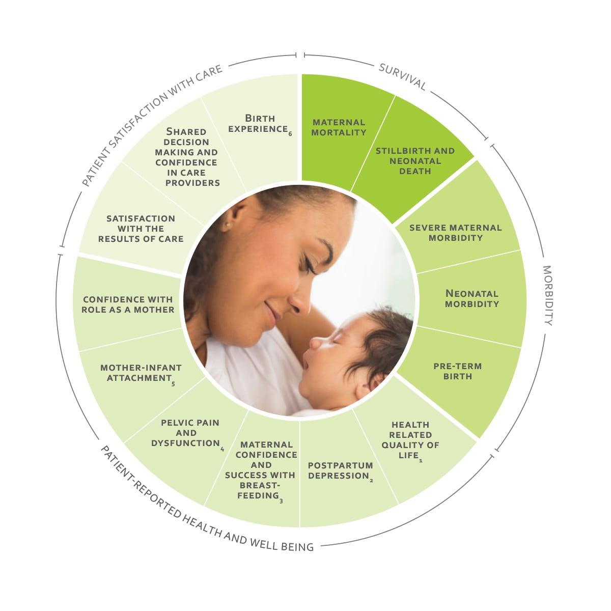ICHOM Standard Sets Pregnancy and Childbirth Outcomes Wheel