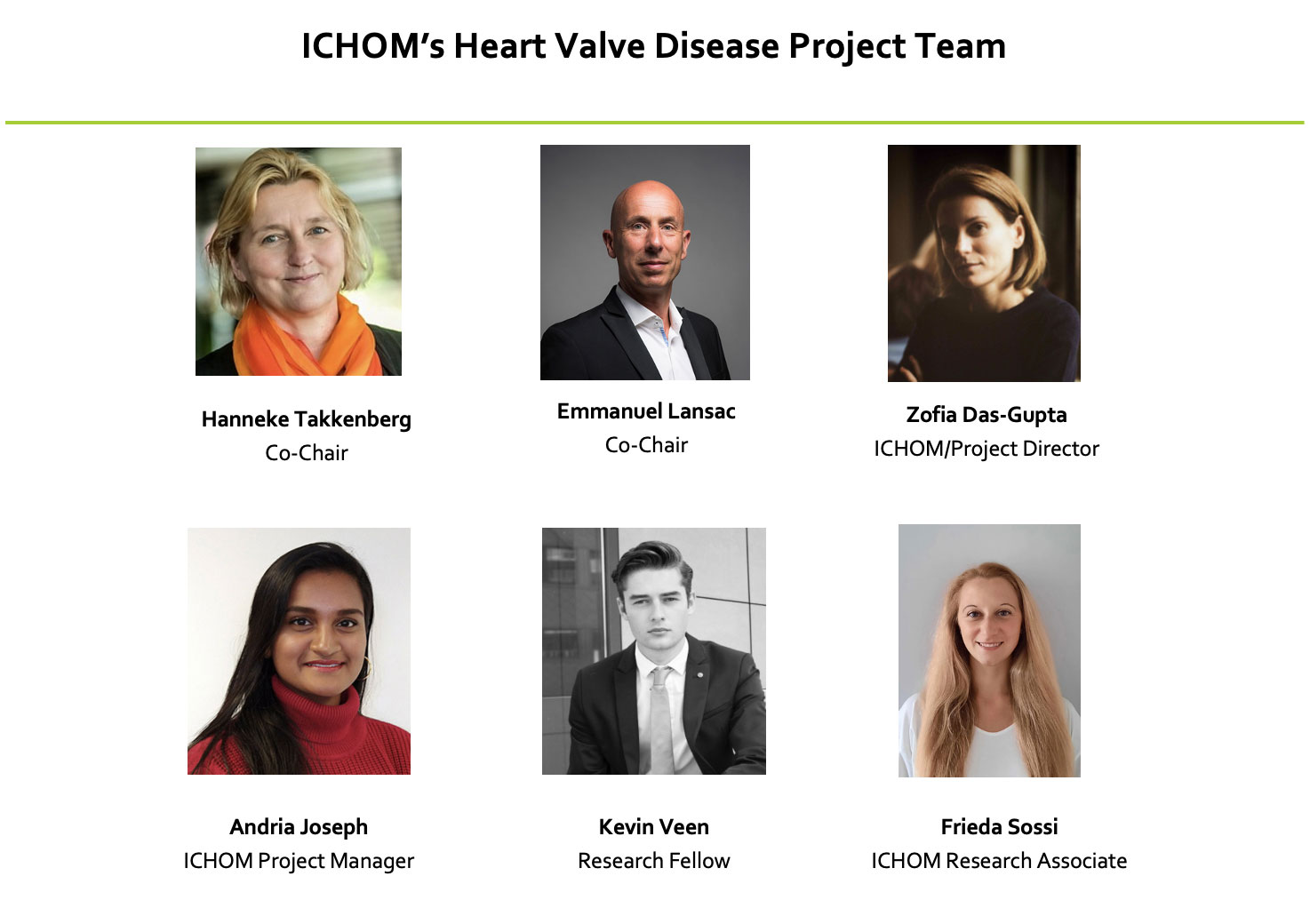 ICHOM Standard Sets Heart Valve Disease Project Team